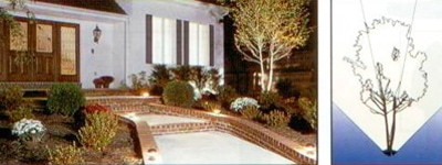 landscaple uplighting